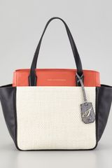 Diane Von Furstenberg On The Go Raffia and Leather Colorblock Tote Bag - Lyst