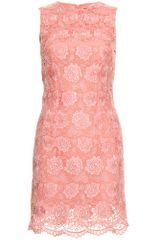 Christopher Kane Lace Overlay Dress in Pink (rose) - Lyst
