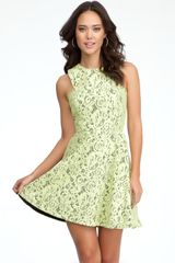 Bebe Fit Flare Lace Dress - Lyst