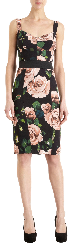 Dolce & Gabbana Rose Print Bustier Dress in Pink | Lyst