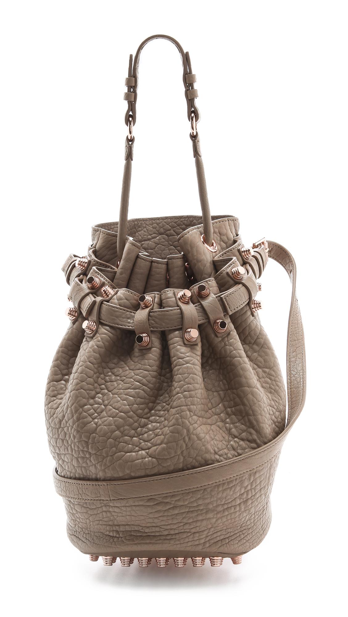 Alexander Wang Diego Bucket Bag In Brown Lyst