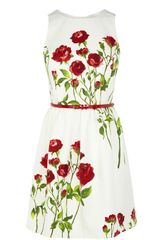 Oasis Rose Stem Print Dress