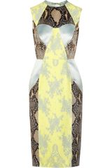 Erdem Brynn Python-Print Satin and Lace Dress - Lyst