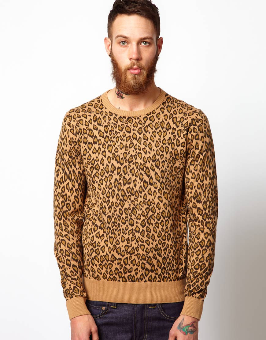 Sweater Leopard Print - The Best Leopard 2017