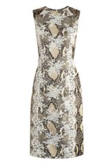 Erdem Tali Snakeprint Lacepanel Dress