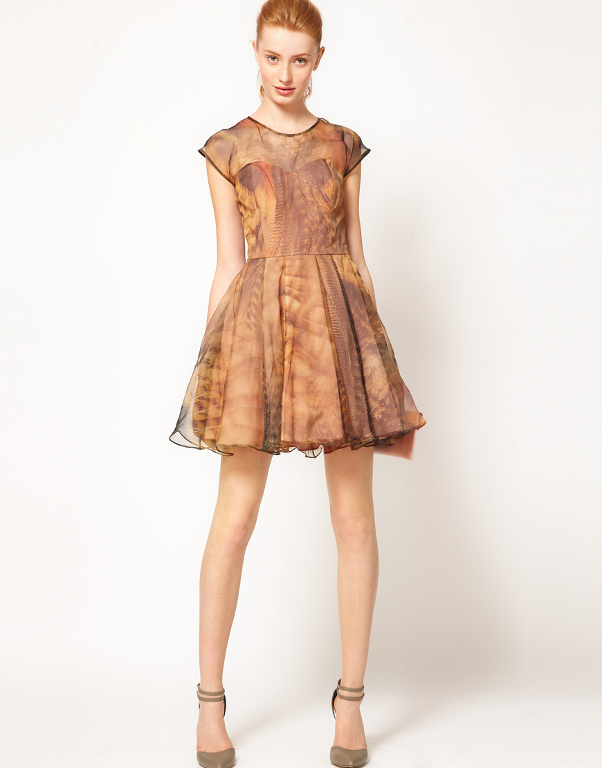 f4e046b27b2e2 Lyst - Ted Baker Woodland Feather Prom Dress in Brown