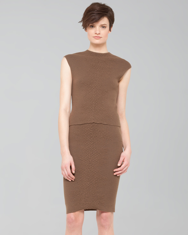 Akris Crocodilestripe Knit Pencil Skirt in Brown (STEPPE ...