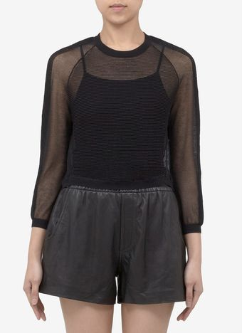Theyskens' Theory Kindley Transparent Knit Sweater - Lyst