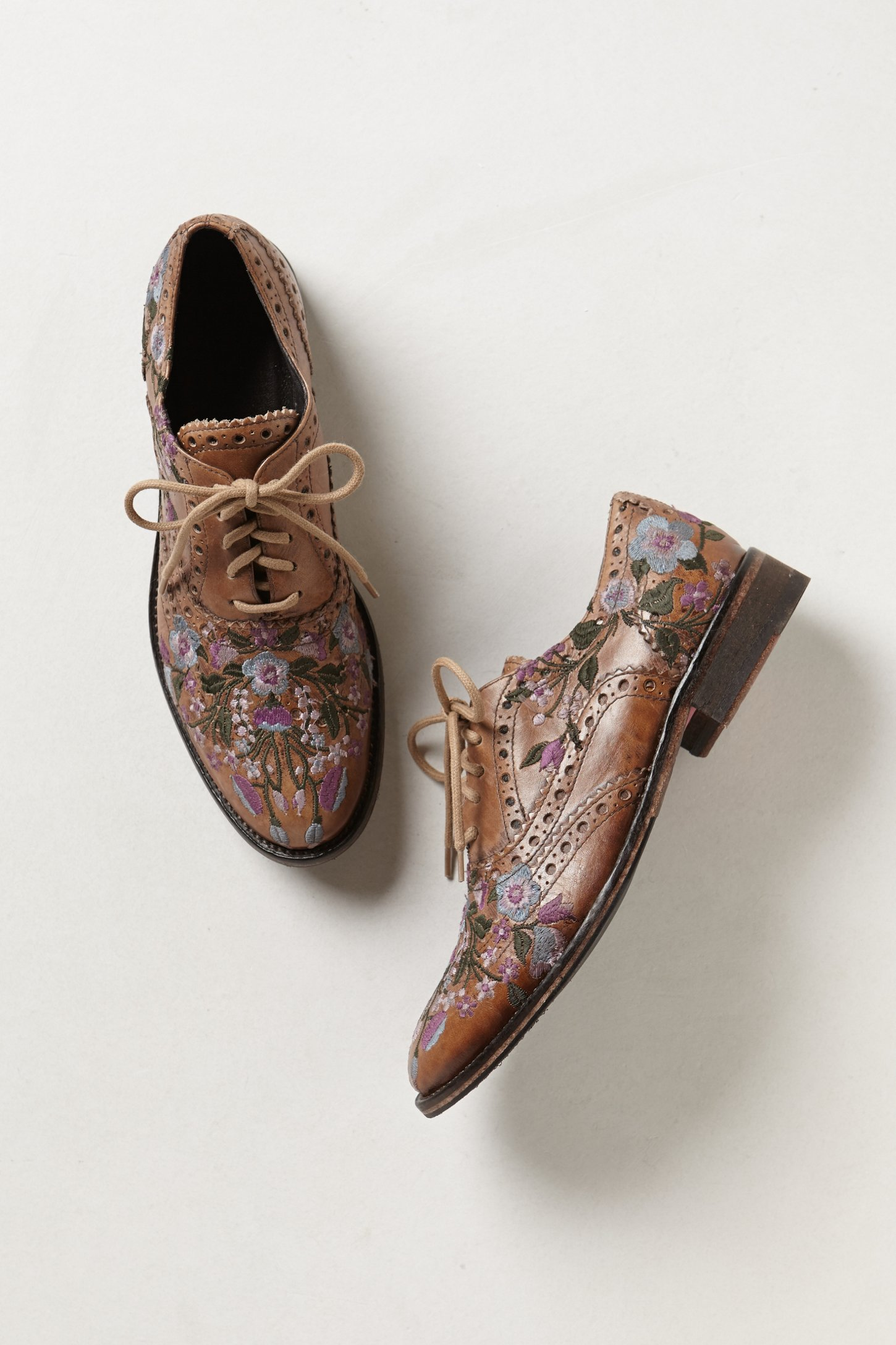 bed stu molina embroidered oxfords | lyst
