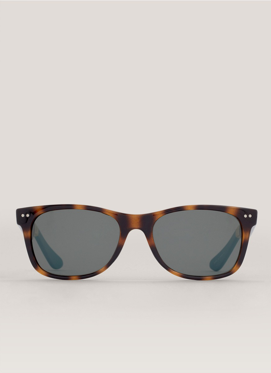 Toms Tortoise Beachmaster Sunglasses in Black (Neutral and ...