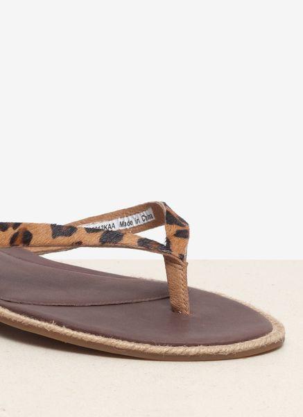 Ugg Allaria Leopard Sandals In Brown Animal Print Lyst
