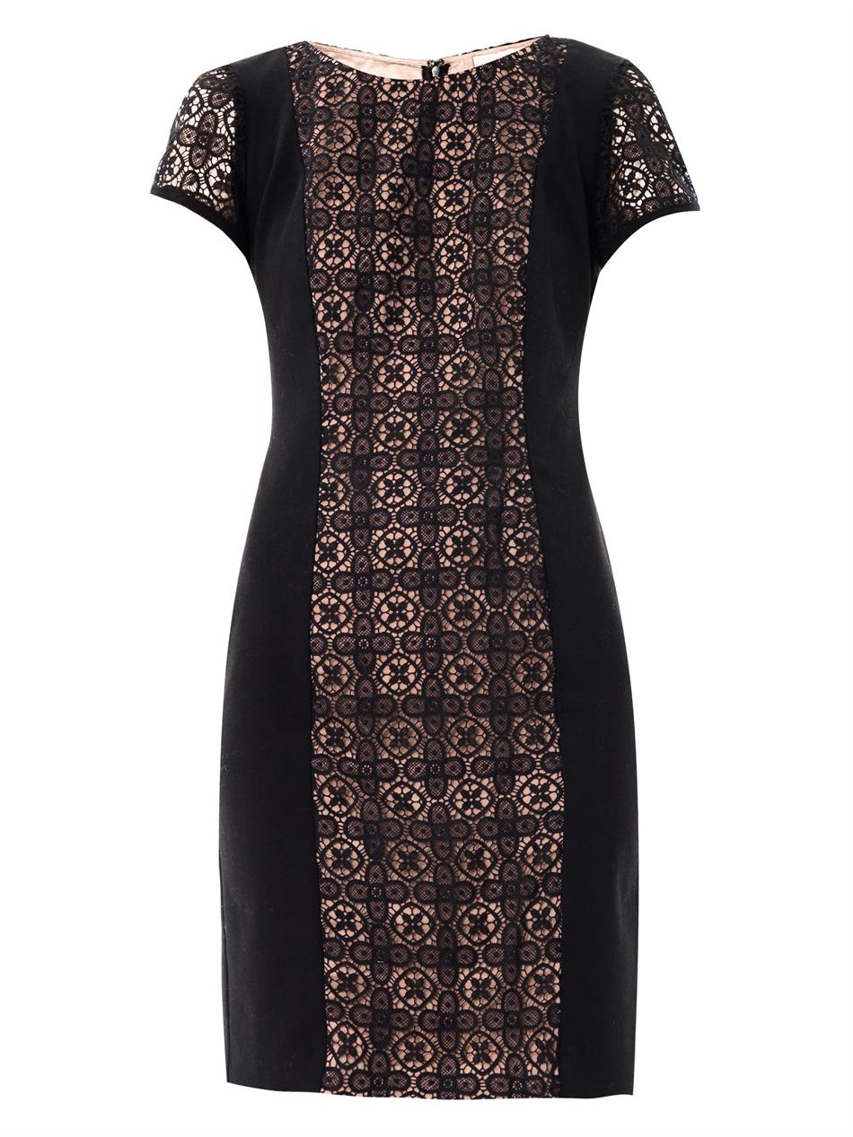 Collette By Collette Dinnigan Grenada Lace Panel Dress in ...