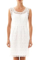 Collette By Collette Dinnigan Daisy Chain Lace Dress - Lyst