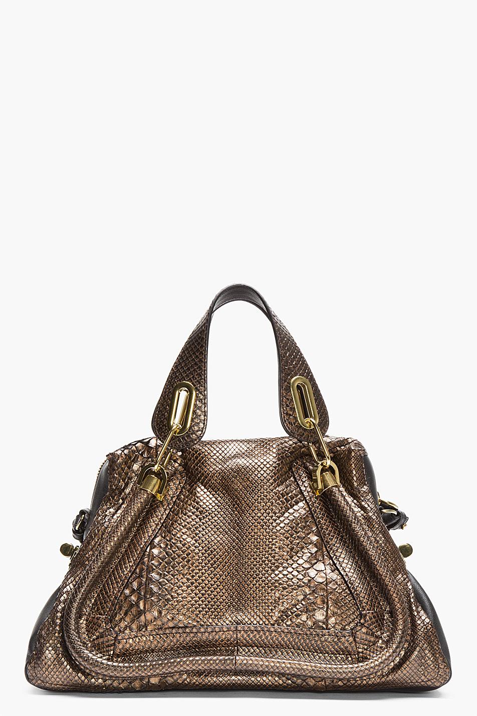 Chlo¨¦ Bronze Metallic Snakeskin Paraty Bag in Gold (bronze) | Lyst
