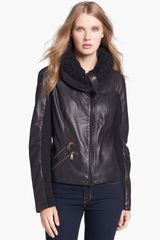 Sam Edelman Knit Collar Leather Jacket - Lyst