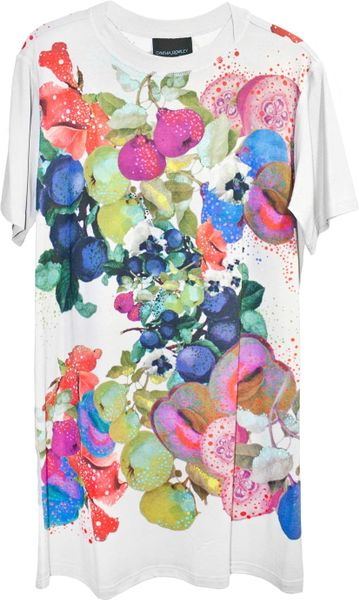 Cynthia Rowley T Shirt Dress in Multicolor (Light Fruit)
