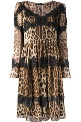 Dolce & Gabbana Leopard and Lace Dress - Lyst