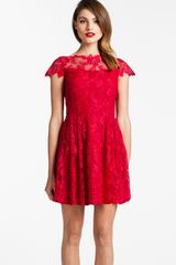 Cynthia Steffe Illusion Yoke Lace Fit Flare Dress - Lyst