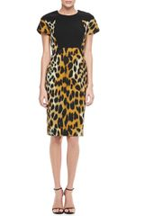 Rachel Roy Leopard print Short sleeve Sheath Dress - Lyst