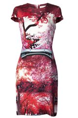 Mary Katrantzou Blemish Lake Print Dress - Lyst