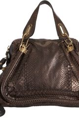 Chloé Python Medium Paraty Satchel with Strap - Lyst