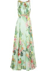 Matthew Williamson Cactus Garden Printed Silk chiffon Gown - Lyst