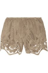 Miguelina Jaya Crocheted Cottonlace Shorts - Lyst