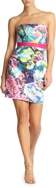 Cynthia Steffe Maisie Leather Waist Floralprint Strapless Dress - Lyst