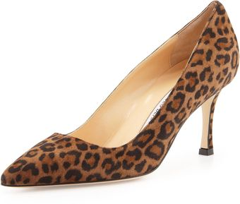 Manolo Blahnik Bb Leopardprint Suede Pointy Pump - Lyst