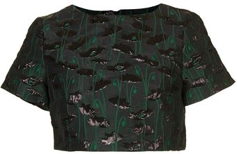 Topshop Poppy Jacquard Crop Top - Lyst