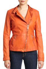 Just Cavalli Cropped Leather Jacket