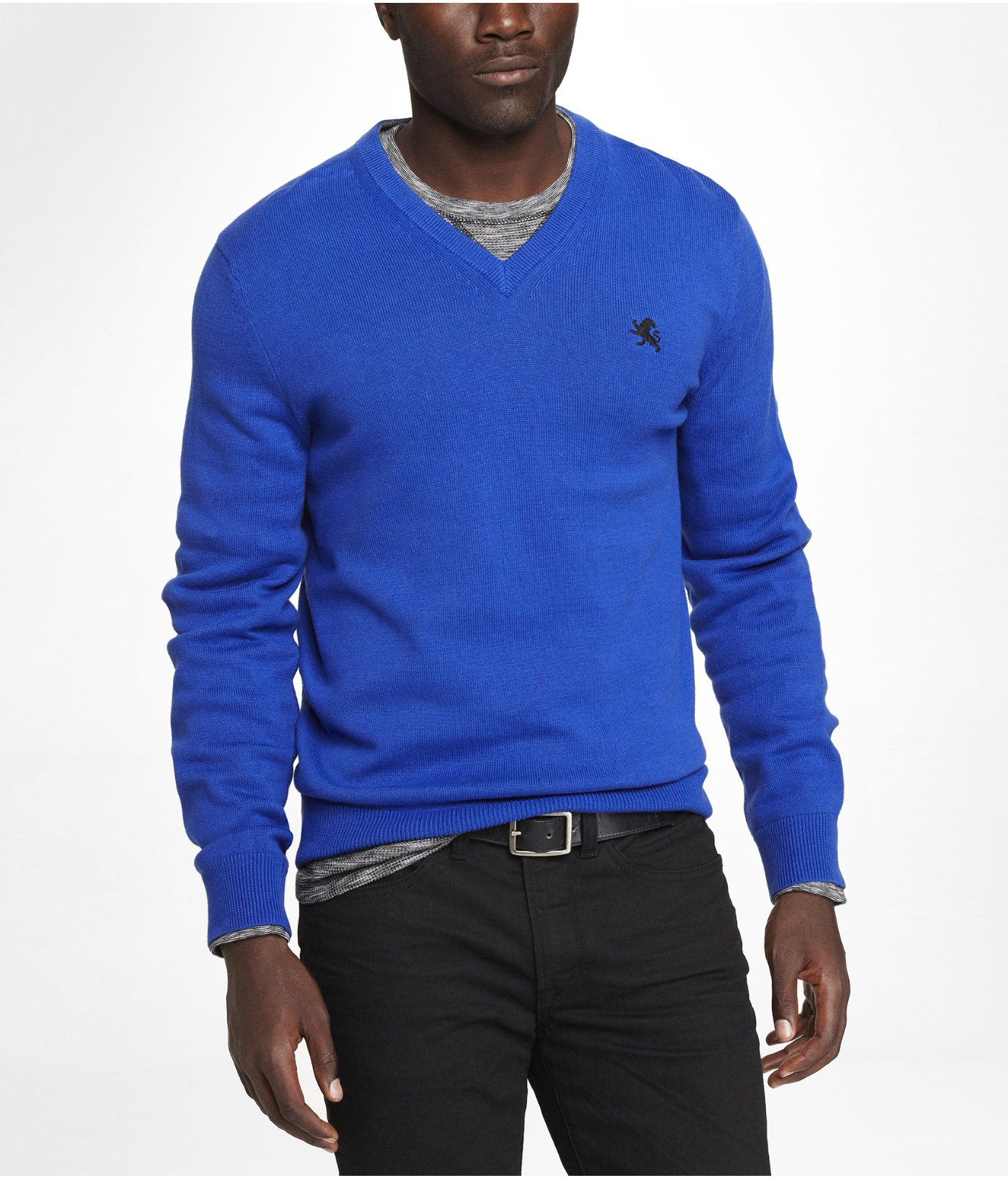 Express Cotton Vneck Small Lion Sweater in Blue for Men | Lyst