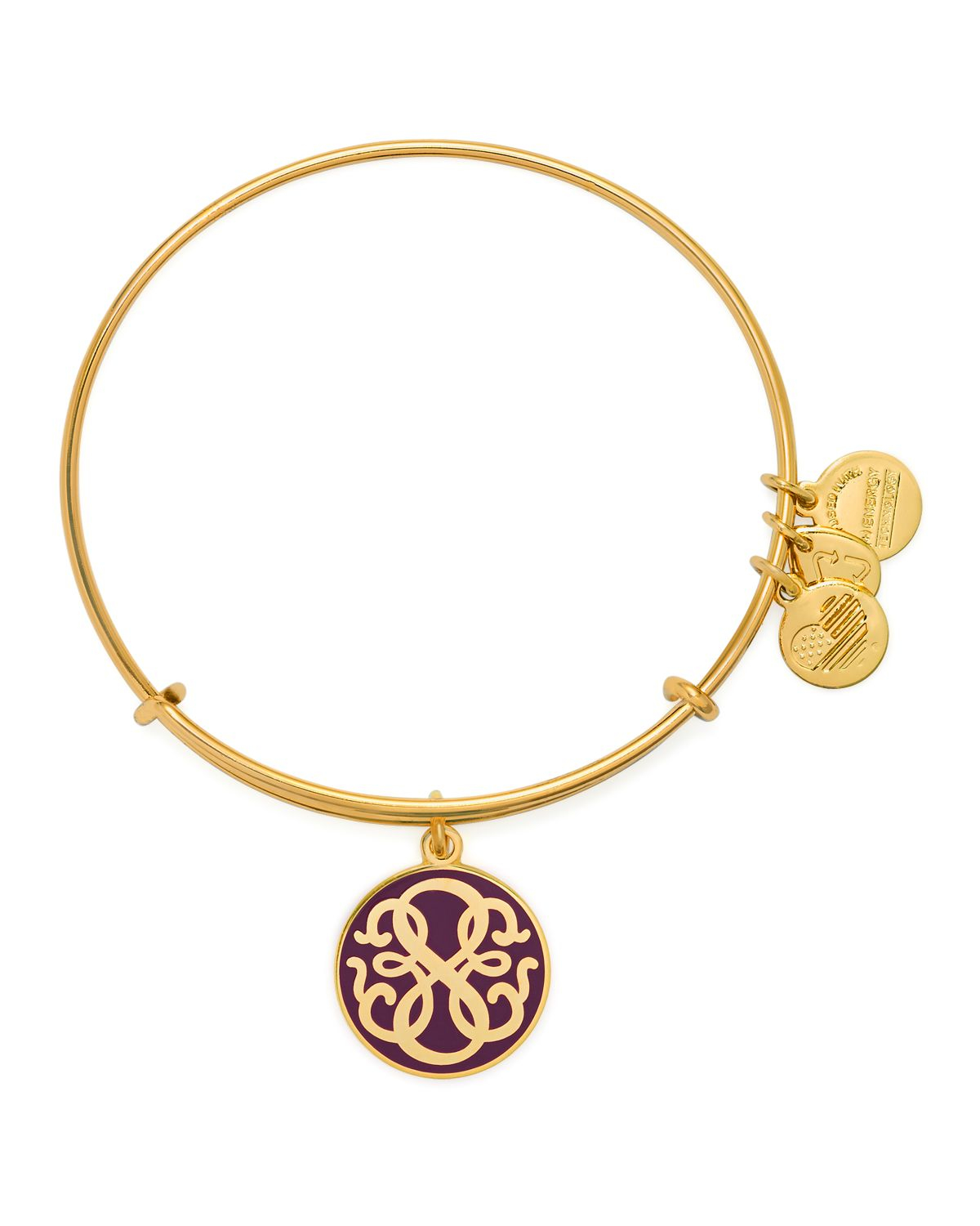 Alex And Ani Charm Bracelets: Alex And Ani Path Of Life Color Infusion Expandable Wire