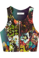 Milly Cropped Printed Neoprene Top