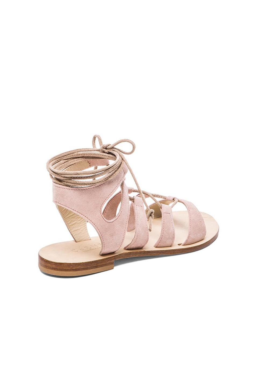 Cornetti Recommone Gladiator Sandals In Pink Lyst