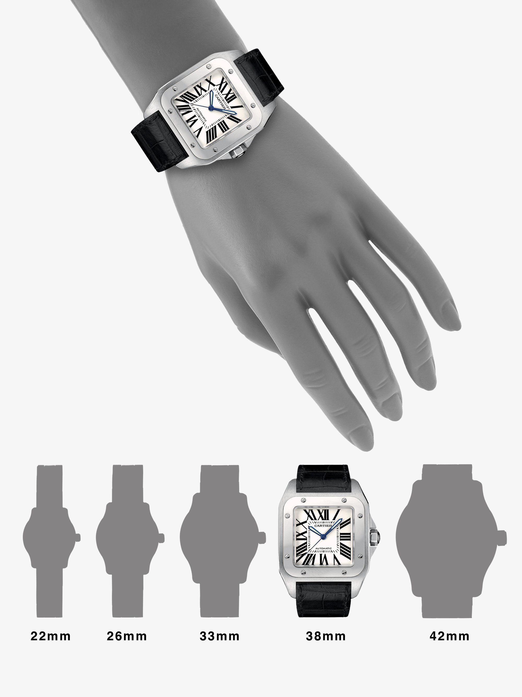 Women Cartier Santos Large Watches