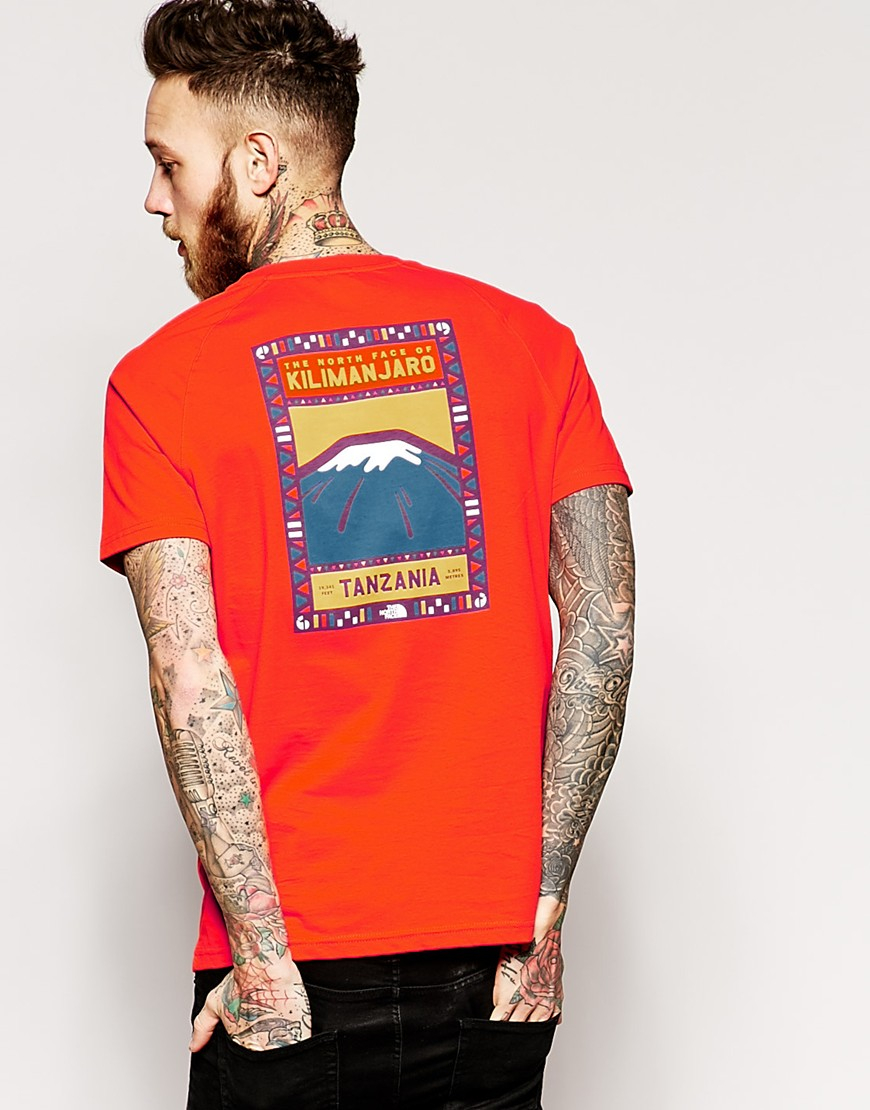 The North Face T Shirt With Kilimanjaro Back Print In