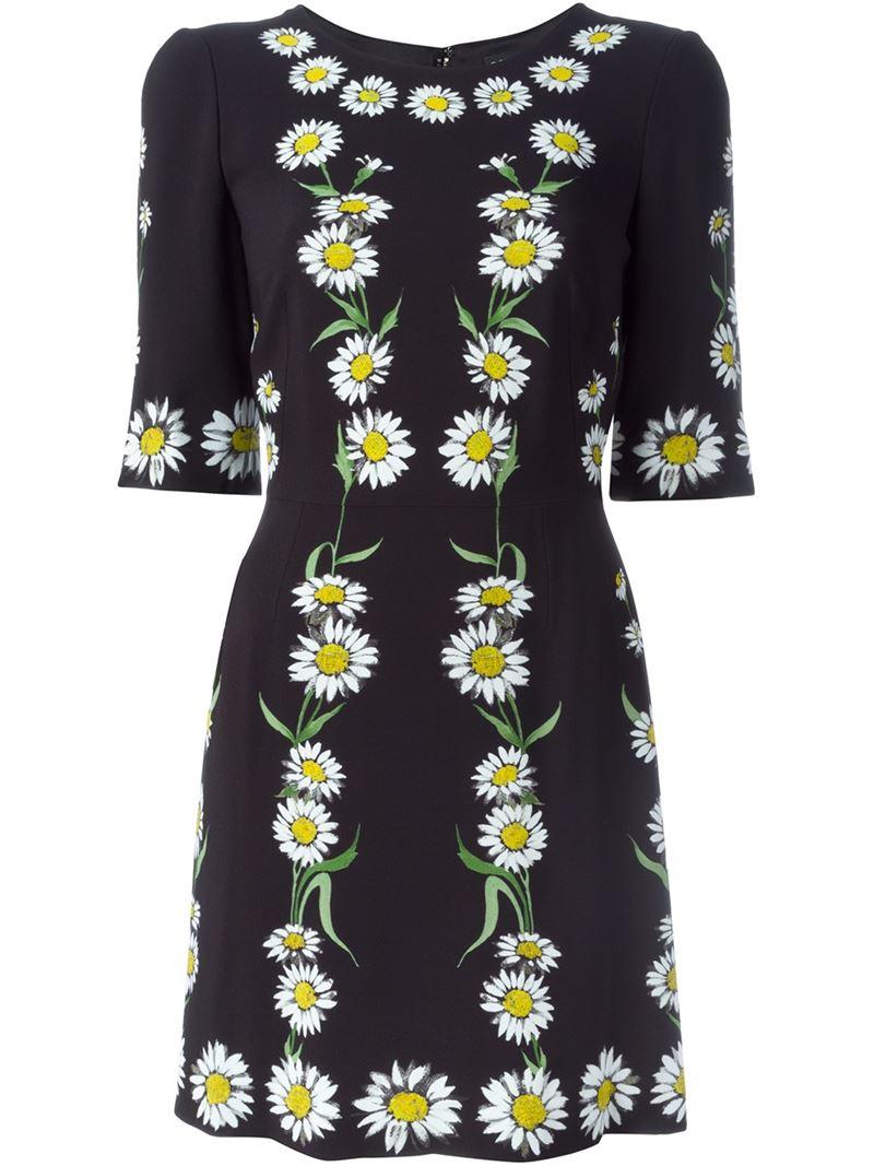 463f8a74 Dolce & Gabbana Daisy Print Dress - Lyst