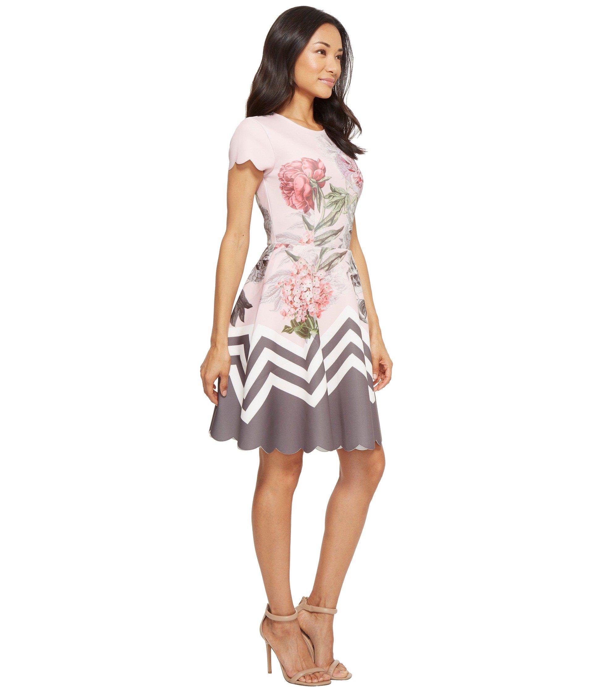 e51e8ffbc Lyst - Ted Baker Haiilie Palace Gardens Ruffle Skater Dress in Pink