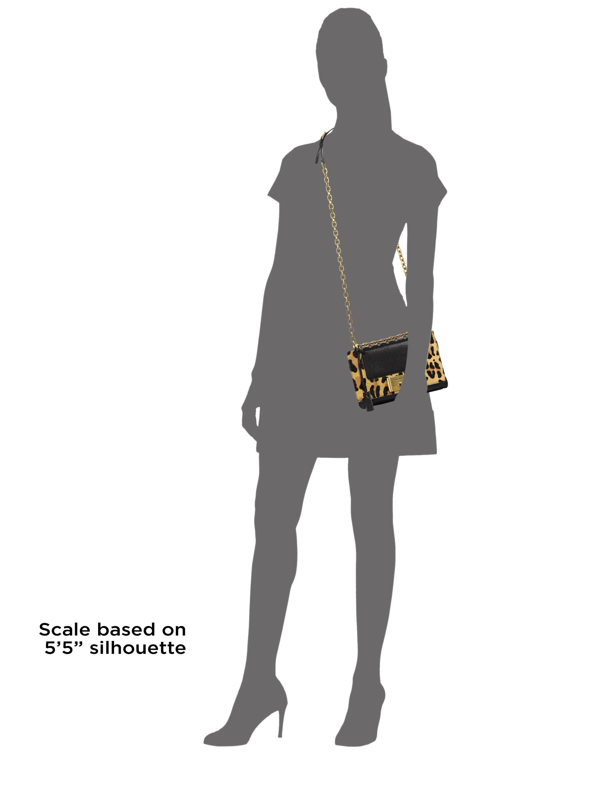 Prada Glace Leather \u0026amp; Leopard-print Calf Hair Chain Shoulder Bag ...