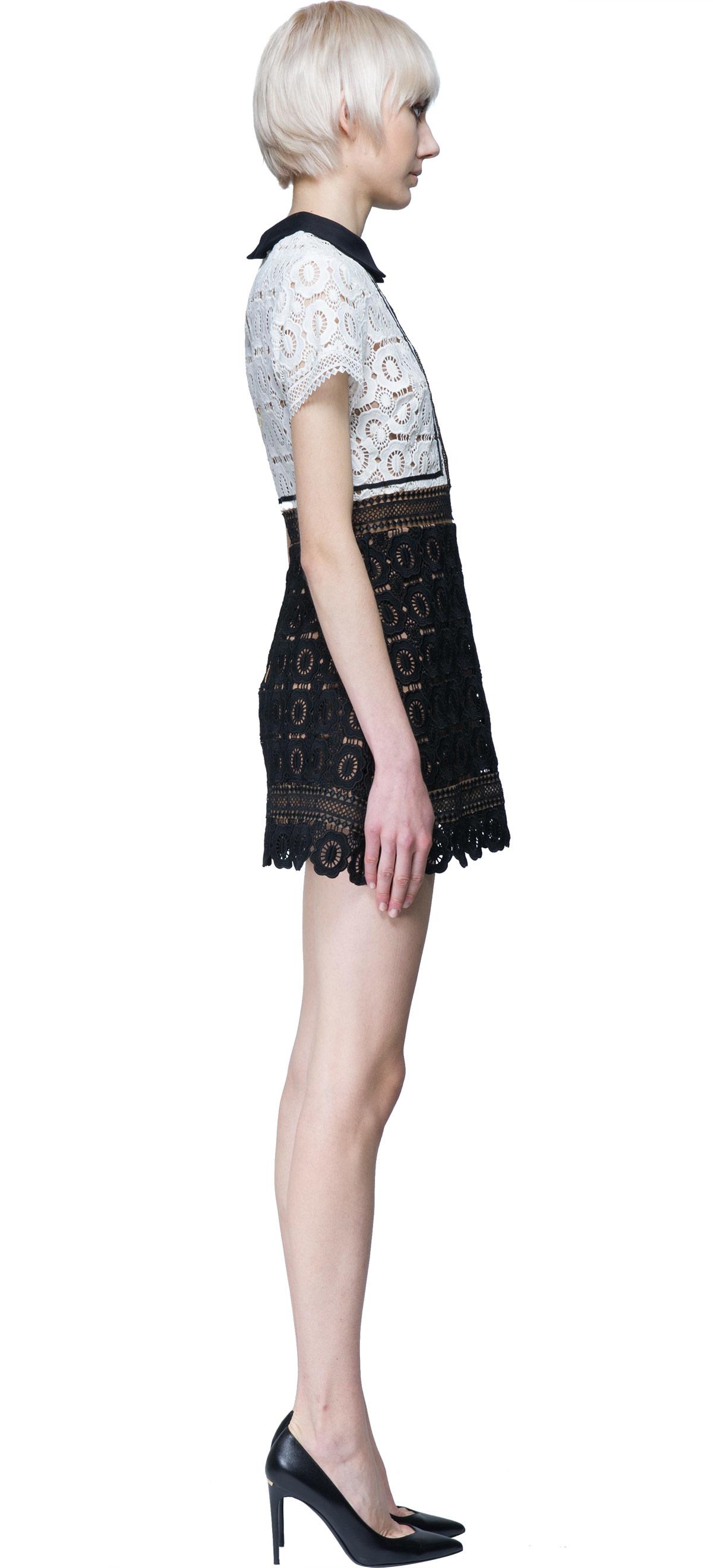 8a6c3052e761 Self-Portrait Felicia Two-tone Guipure Lace Mini Dress in Black - Lyst