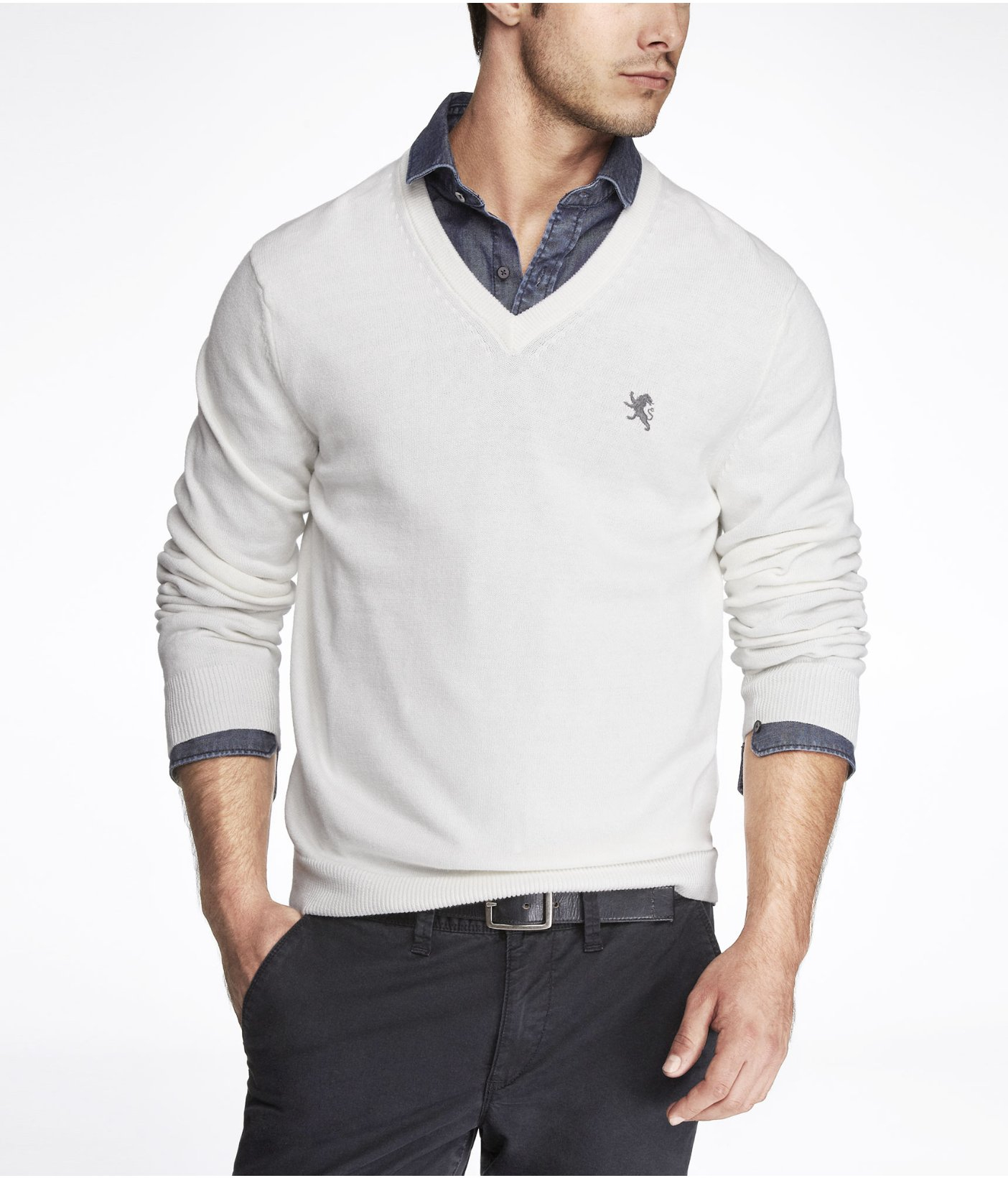 Express Cotton Vneck Small Lion Sweater in White for Men | Lyst