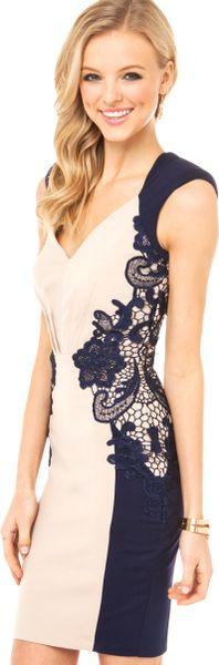 Little Mistress Lace Detail Bodycon Dress In Blue Cream