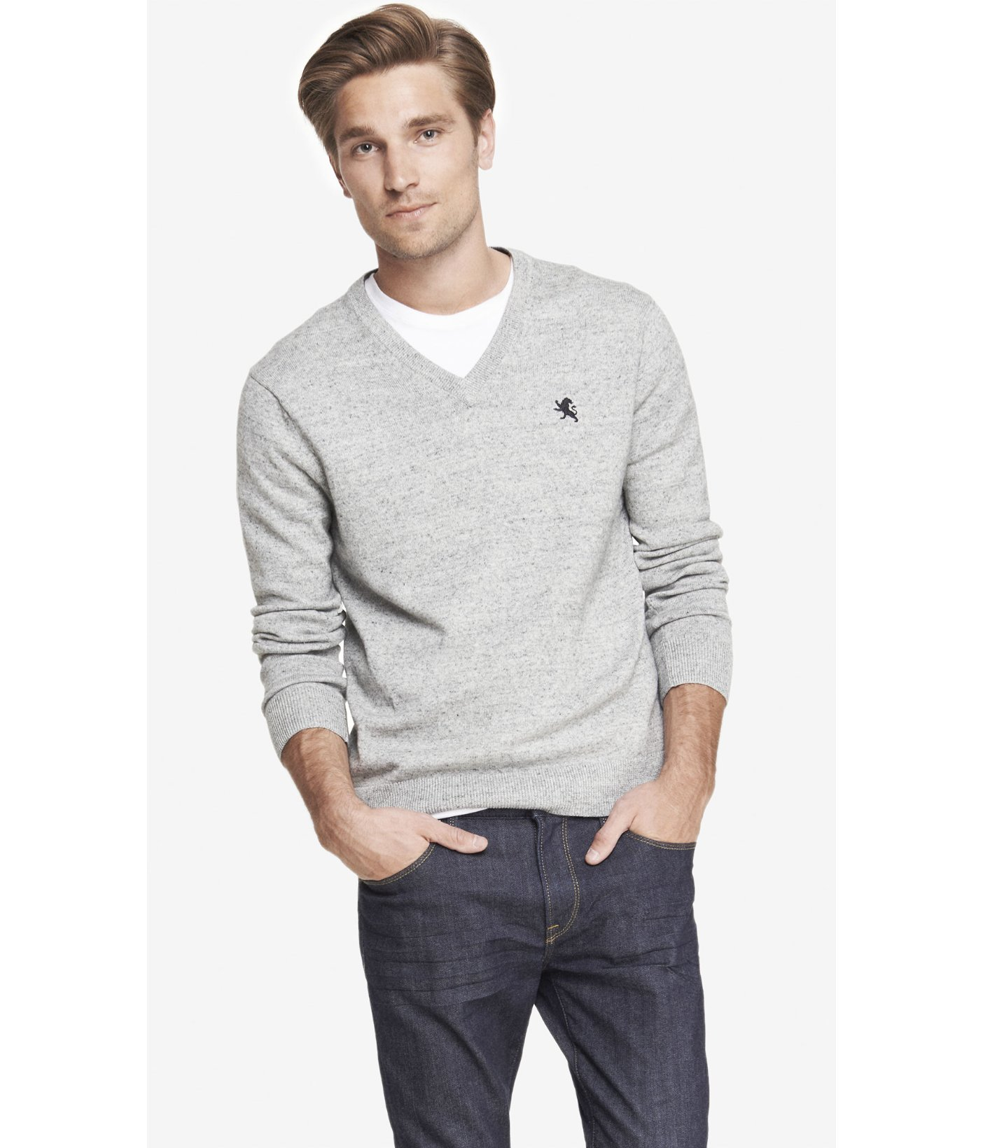 0a1c12e16c6e Lyst - Express Nep Knit Small Lion V-Neck Sweater in Gray for Men