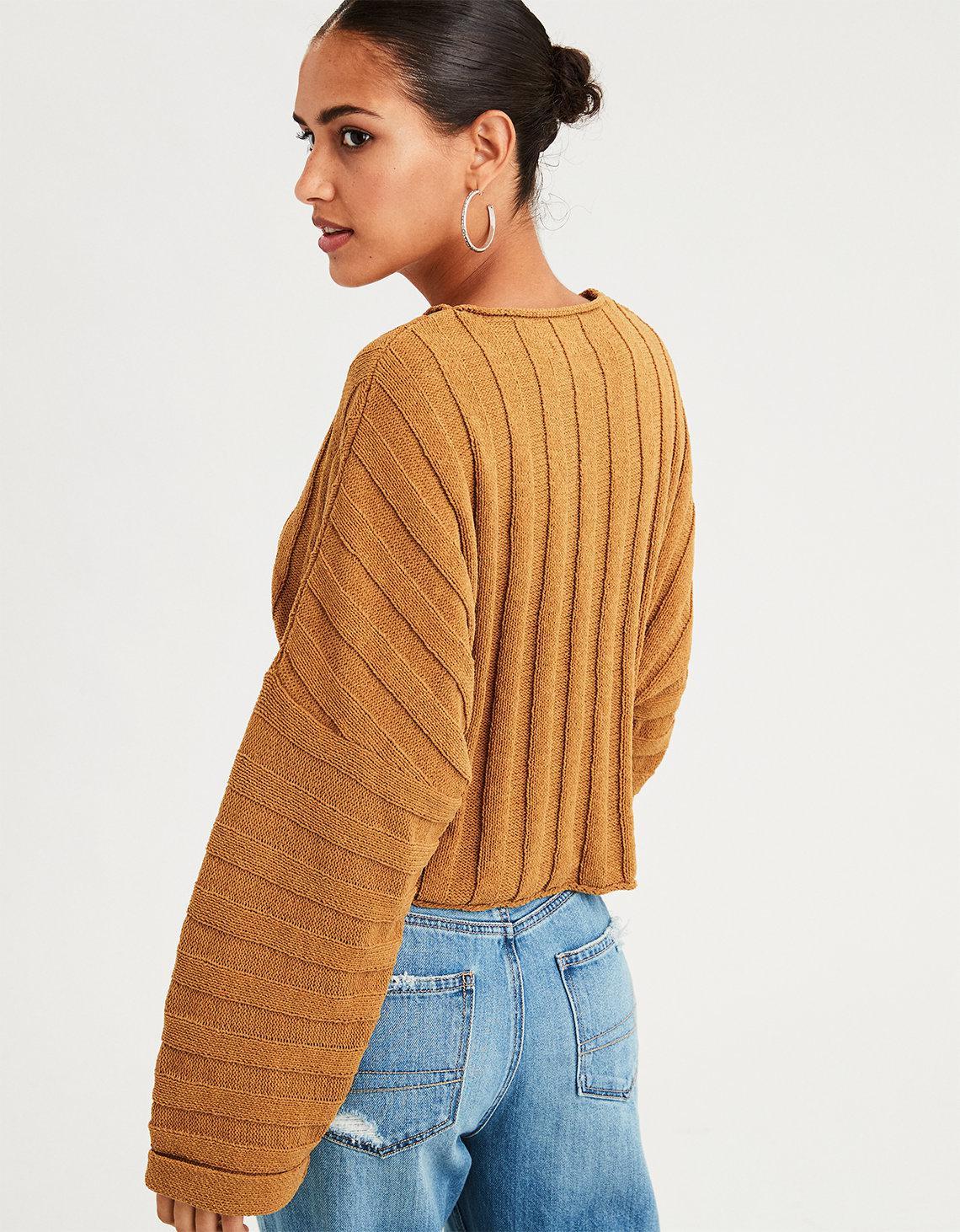 04917475625973 Lyst american eagle ae wide rib crop sweater jpg 1140x1462 American eagle  cropped sweater