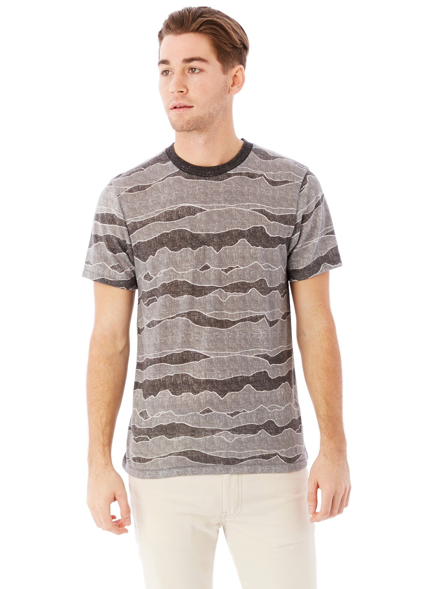 Alternative Apparel Printed Eco Jersey Crew T Shirt In