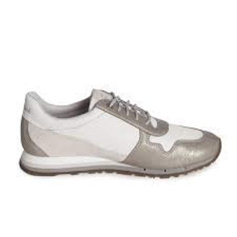 Timberland 's Milan Flavor Oxfords - Lyst