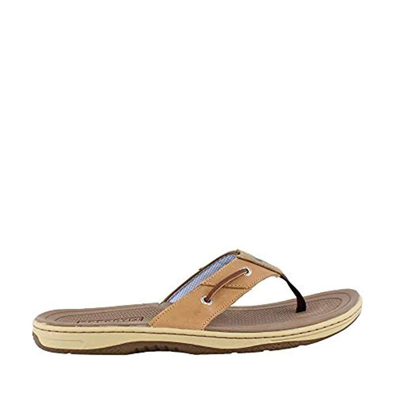 1ac30055f7f4f8 Lyst - Sperry Top-Sider Top-sider Baitfish Thong Sandal in Brown for Men