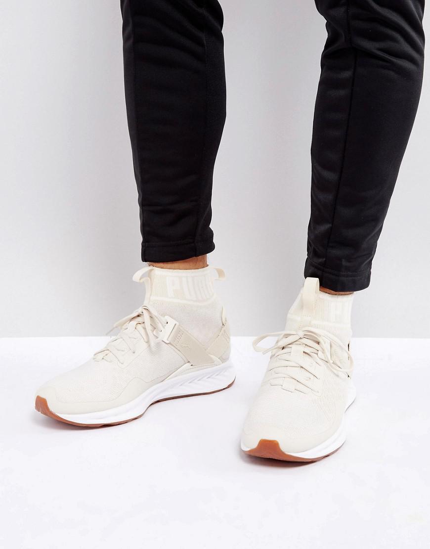 Lyst - PUMA Ignite Evoknit Hypernature Sneakers In Beige 19033702 in ... 8b3f53c7f