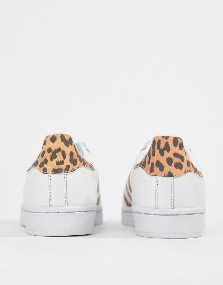 be865634f adidas Originals Superstar Trainers With Leopard Print Trim in Black - Lyst